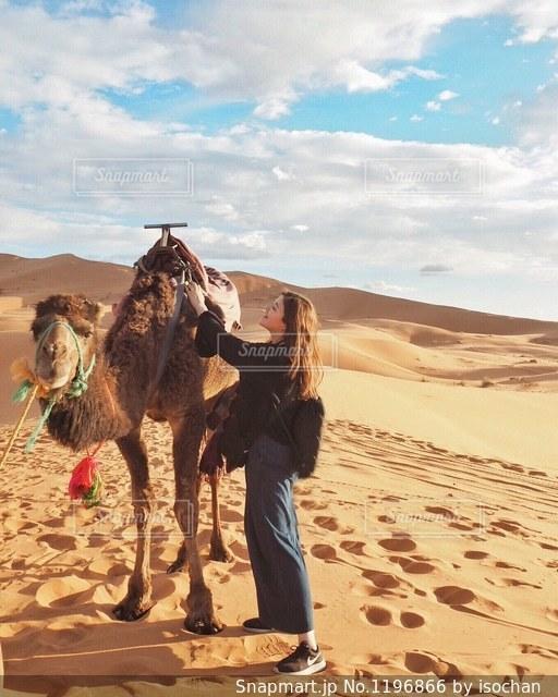 ラクダとお友達になりました😆🐫の写真・画像素材[1196866]