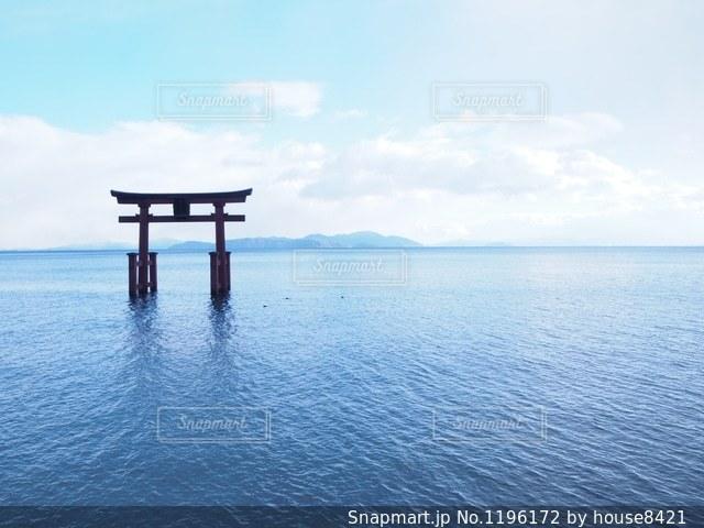 白髭神社の写真・画像素材[1196172]