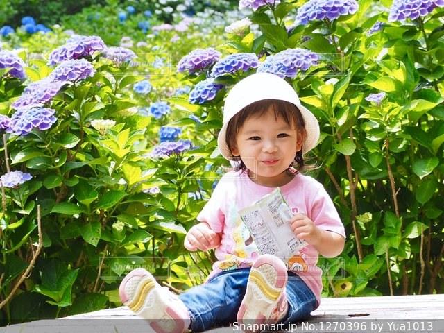 紫陽花畑と娘の写真・画像素材[1270396]