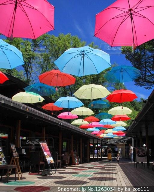 カラフルな傘の写真・画像素材[1263054]
