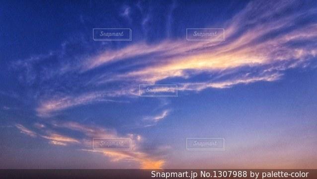 青夕焼けの表情の写真・画像素材[1307988]