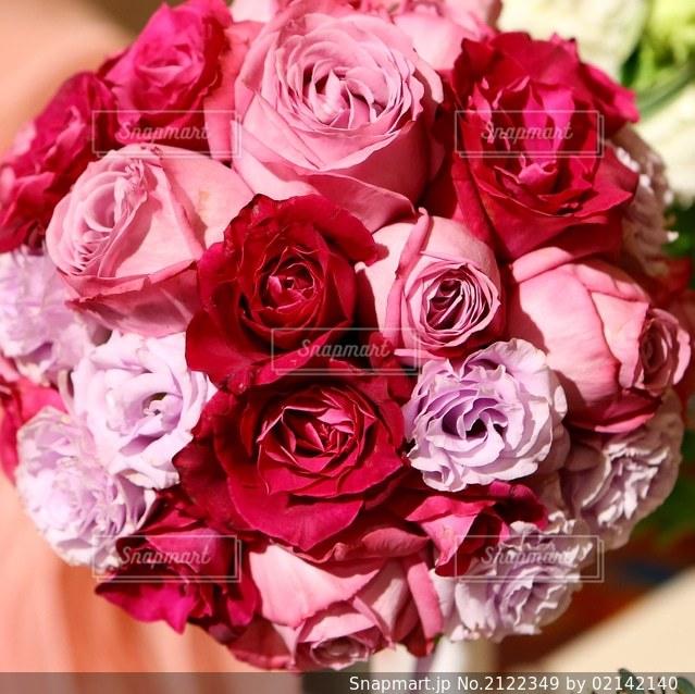 花のクローズアップの写真・画像素材[2122349]