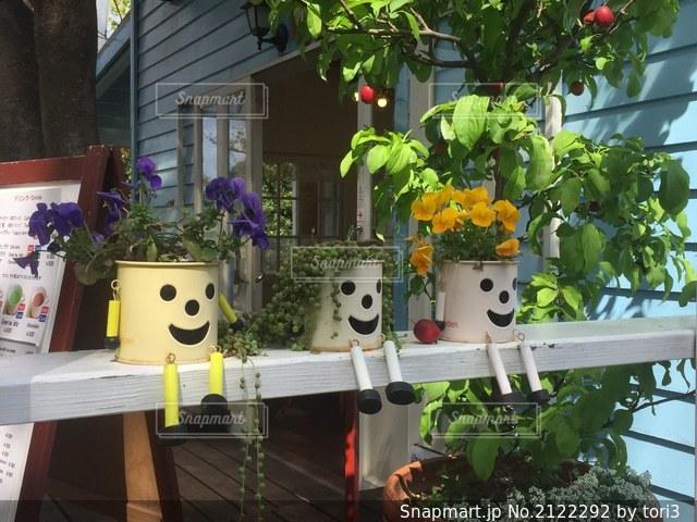 座っている植木鉢たちの写真・画像素材[2122292]