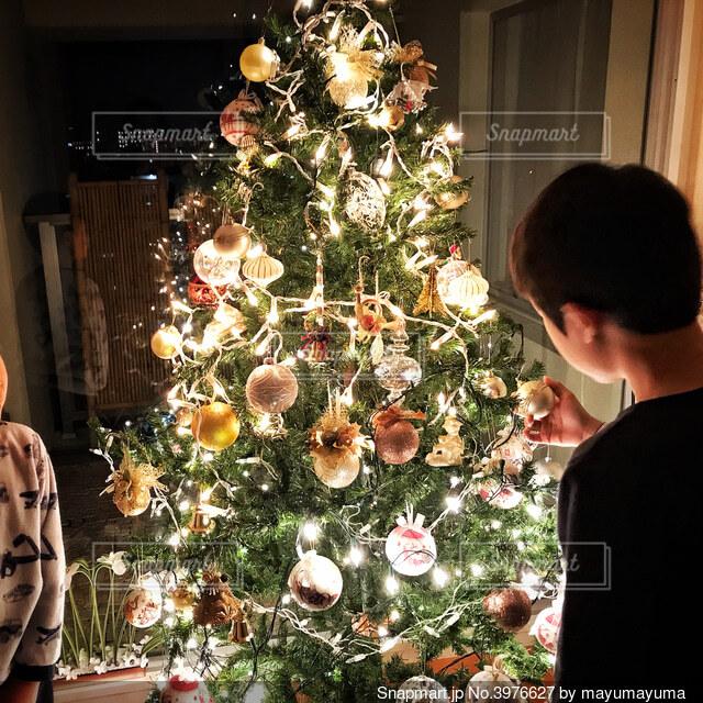 クリスマスツリーを眺める少年の写真・画像素材[3976627]