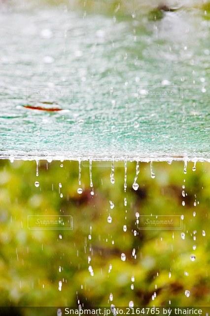 雨から落ちる雨水の写真・画像素材[2164765]