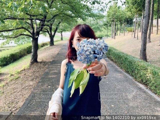 紫陽花の写真・画像素材[1402210]
