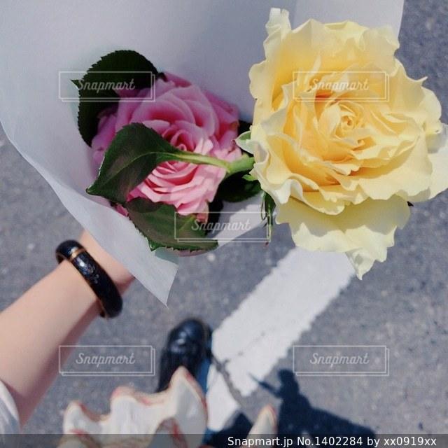近くの花のアップの写真・画像素材[1402284]