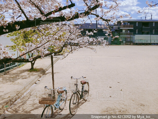 自転車で公園までの写真・画像素材[4213052]
