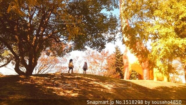秋色の風景の中の子供達の写真・画像素材[1518298]