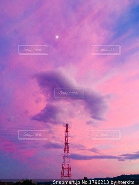 ピンク天使の羽の写真・画像素材[1796213]