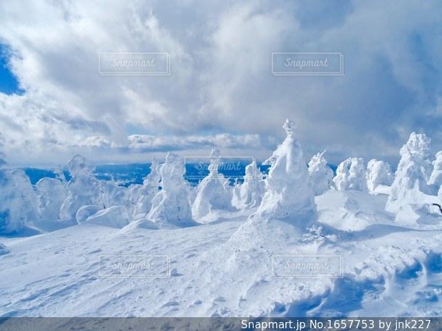 樹氷の写真・画像素材[1657753]