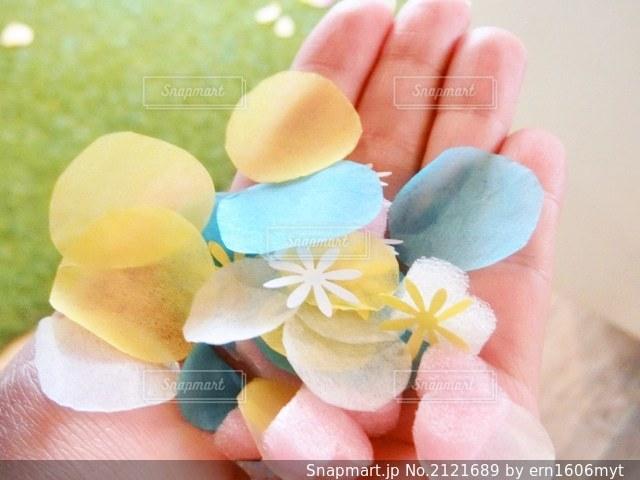 花のクローズアップの写真・画像素材[2121689]