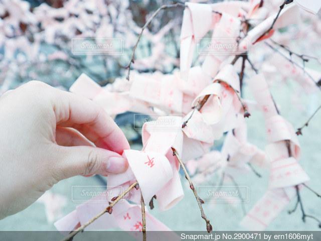 紙を持つ手の写真・画像素材[2900471]