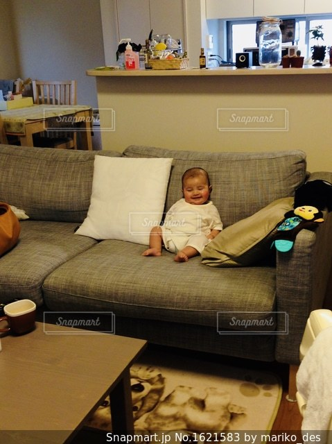 ソファーでテレビ観賞の写真・画像素材[1621583]