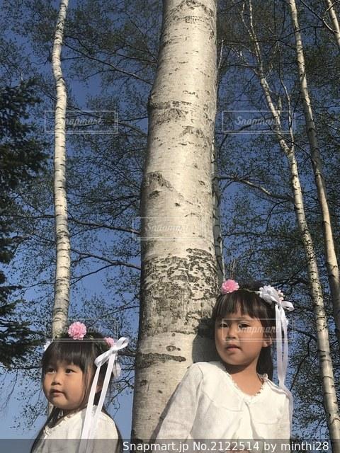 木の隣に立っている幼い子供たちのグループの写真・画像素材[2122514]