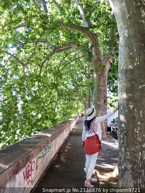 木の隣に立っている人の写真・画像素材[2138876]