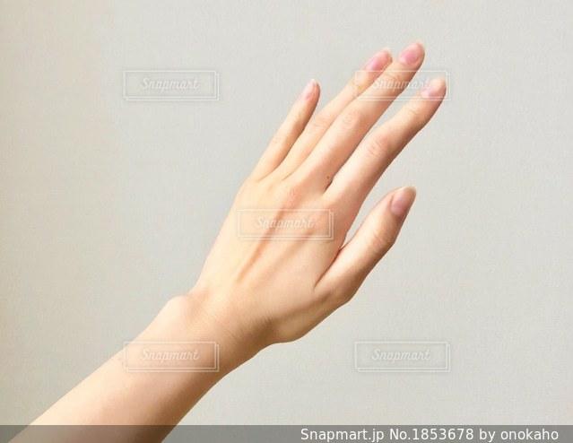 女性の手首の写真・画像素材[1853678]