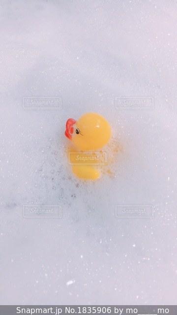 泡風呂とあひるの写真・画像素材[1835906]