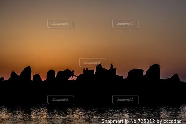夕日とシルエットの写真・画像素材[725012]