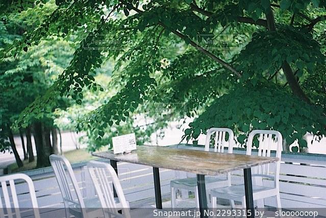 カフェの写真・画像素材[2293315]
