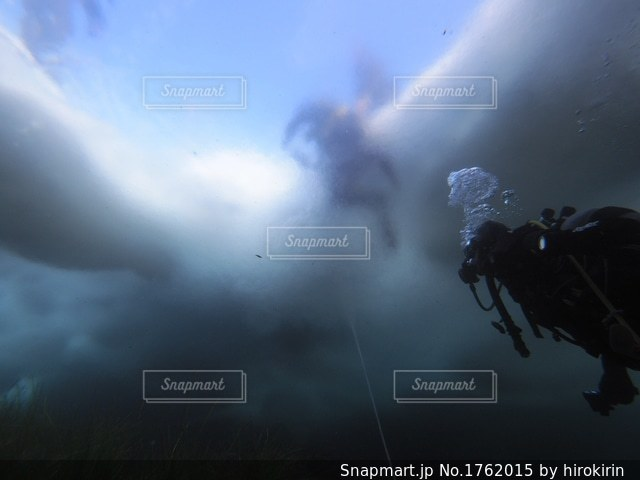 流氷下のハロックライン(海水と淡水の境目)の写真・画像素材[1762015]