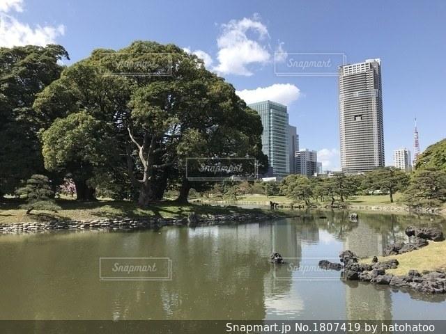 自然とビルの共生の写真・画像素材[1807419]