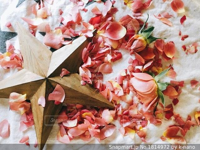 花の写真・画像素材[1814972]