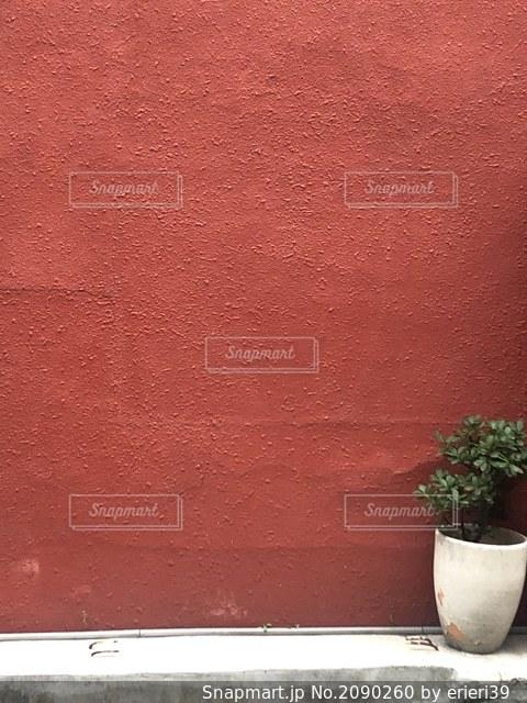赤い壁と緑の写真・画像素材[2090260]
