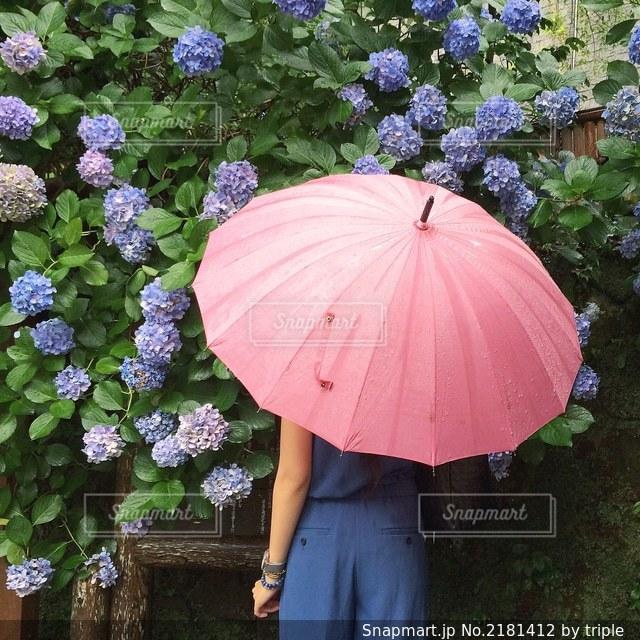 ピンクの傘を持っている女性の写真・画像素材[2181412]