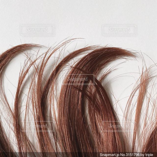 長い髪の人の写真・画像素材[3151796]