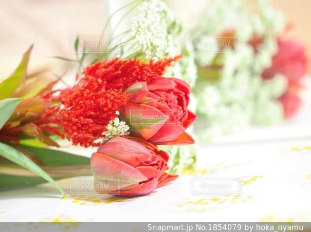 春の花束の写真・画像素材[1854079]