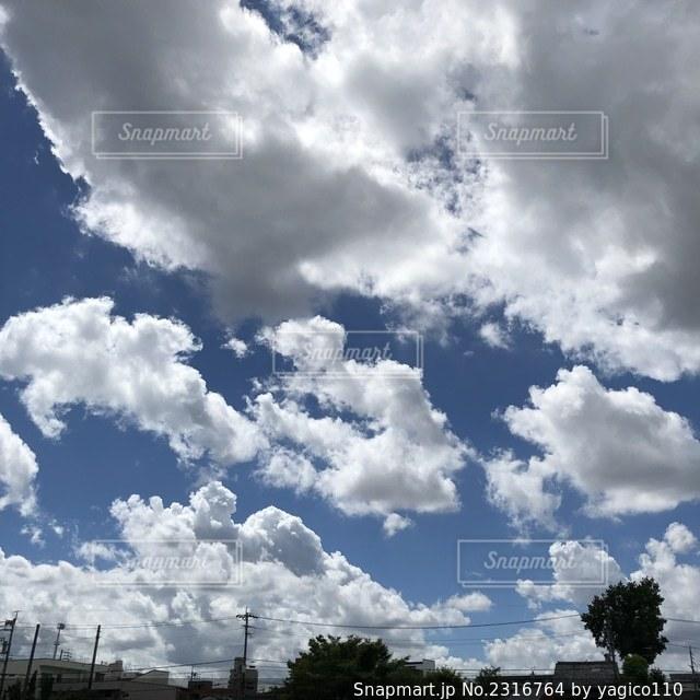 台風前日の写真・画像素材[2316764]