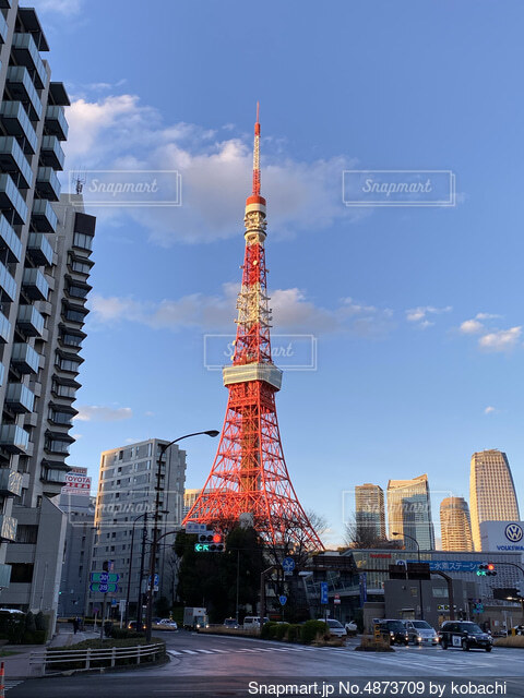晴天の東京タワーの写真・画像素材[4873709]