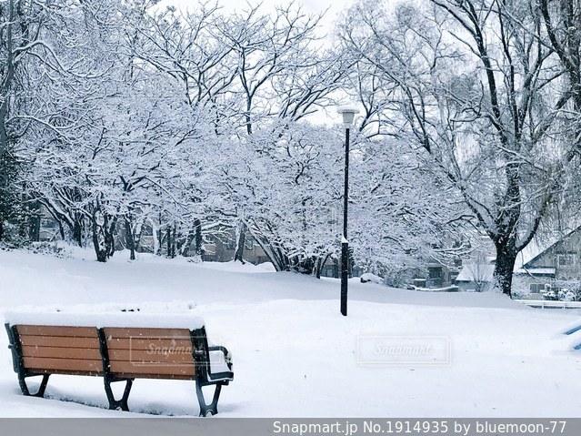 誰もいない冬のベンチの写真・画像素材[1914935]