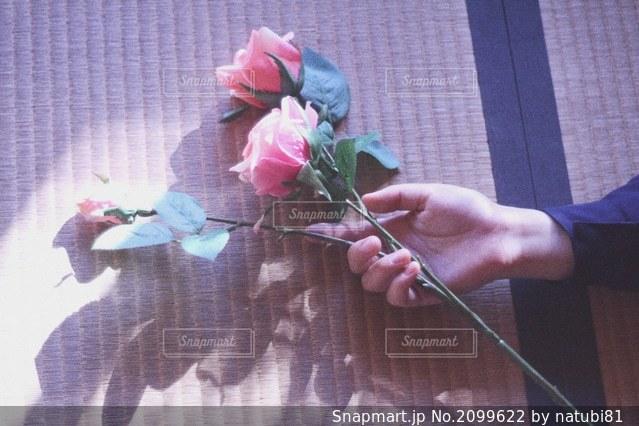 意志を持っての写真・画像素材[2099622]