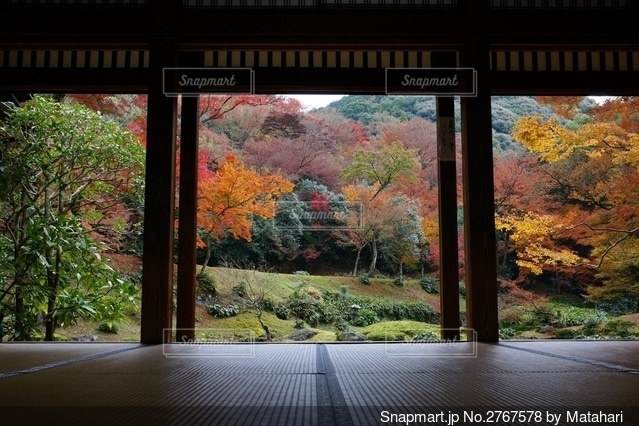 大きな窓の眺めの写真・画像素材[2767578]