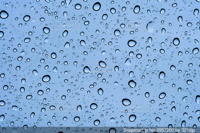 雨粒の写真・画像素材[2957200]