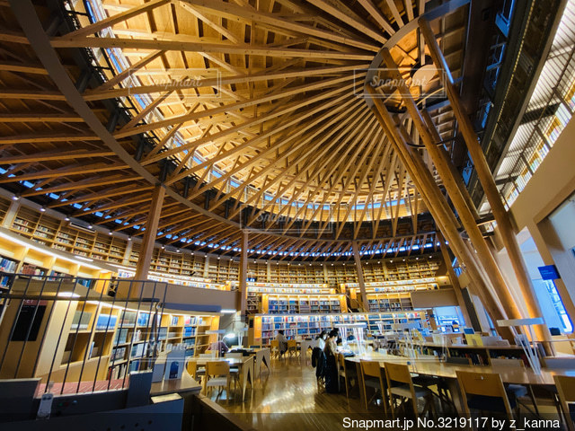図書館で勉強の写真・画像素材[3219117]