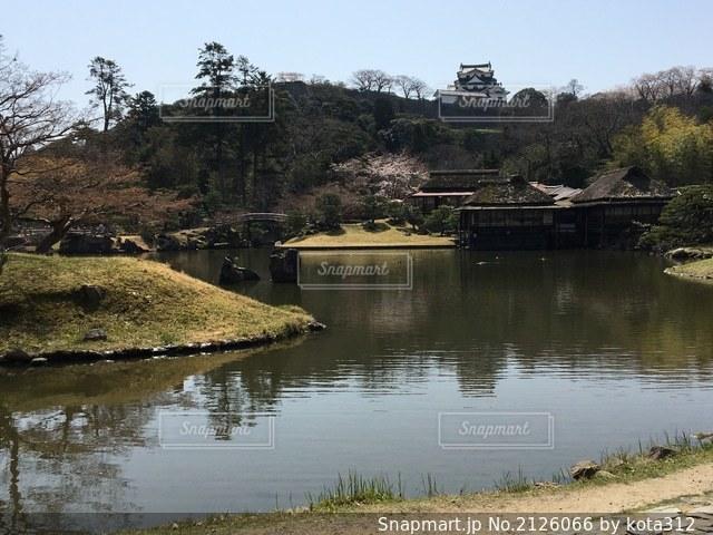 水域の隣の池の写真・画像素材[2126066]