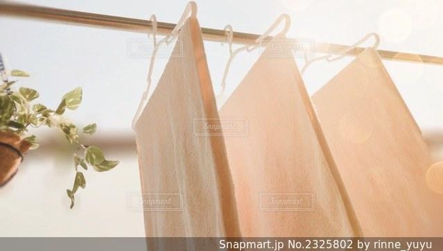 お洗濯の写真・画像素材[2325802]
