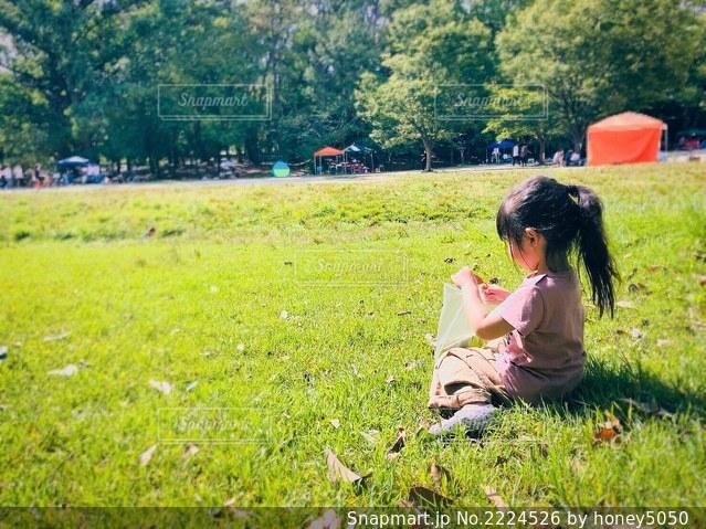 緑豊かな公園での写真・画像素材[2224526]