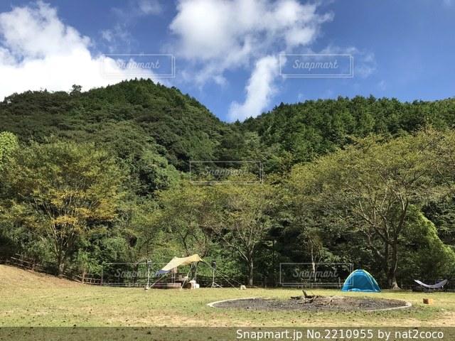 背景に木がある草地のテント DJの写真・画像素材[2210955]