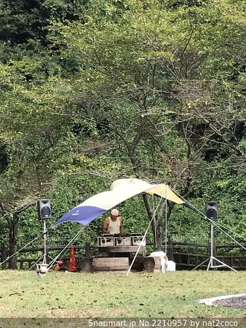 草に覆われた野原の上に座っている傘の写真・画像素材[2210957]