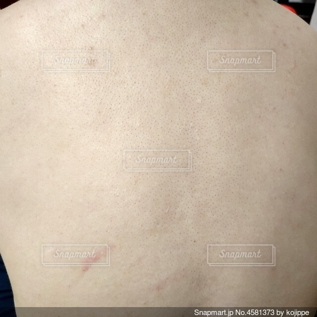 30代女性の肩から腰にかけての背中のアップの写真・画像素材[4581373]