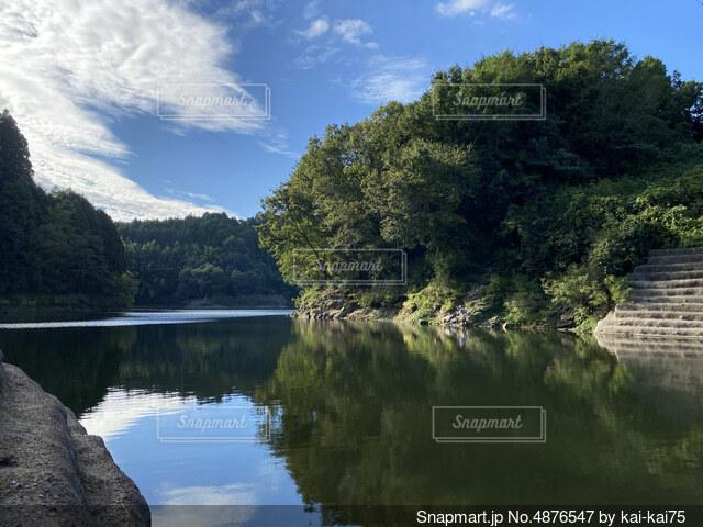 静かな湖畔の写真・画像素材[4876547]