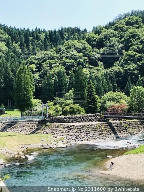 川のある風景の写真・画像素材[2311600]