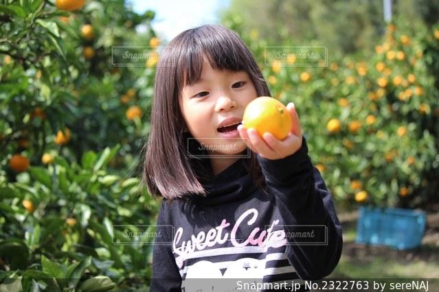 みかんを持っている女の子の写真・画像素材[2322763]