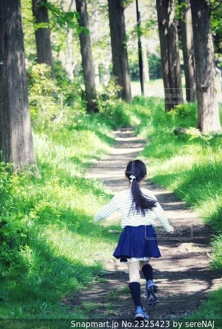 森へ向かう女の子の写真・画像素材[2325423]