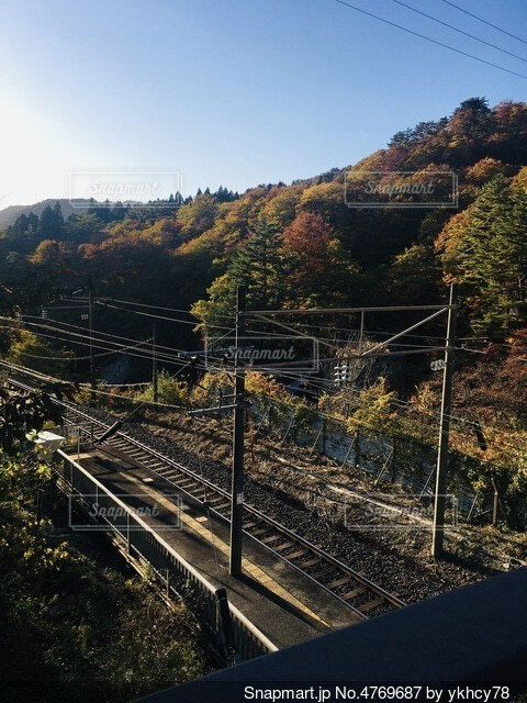 紅葉と線路の写真・画像素材[4769687]