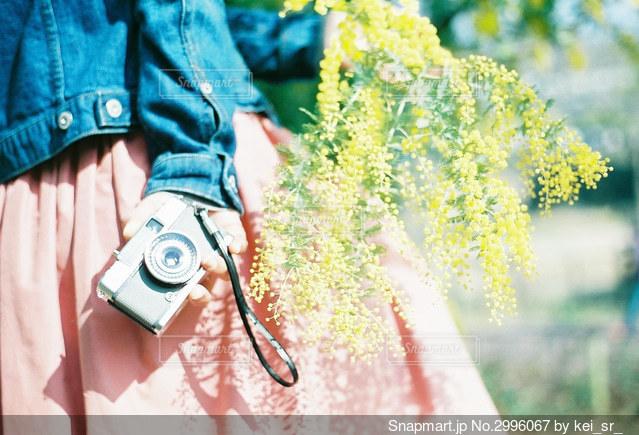 花と女子の写真・画像素材[2996067]